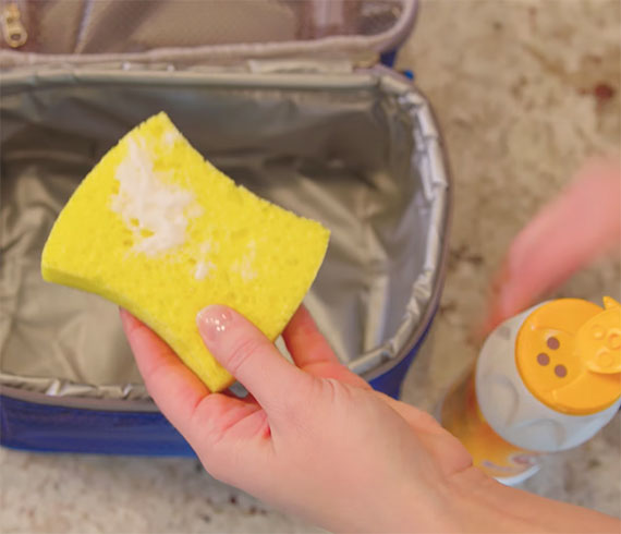 How To Deodorize Lunch Containers